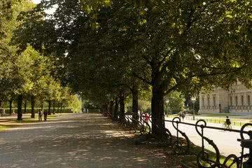 Park München Sommer