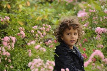 Kleiner Junge im Garten
